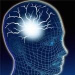 Otak dan Akal